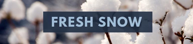 Fresh Snow Banner